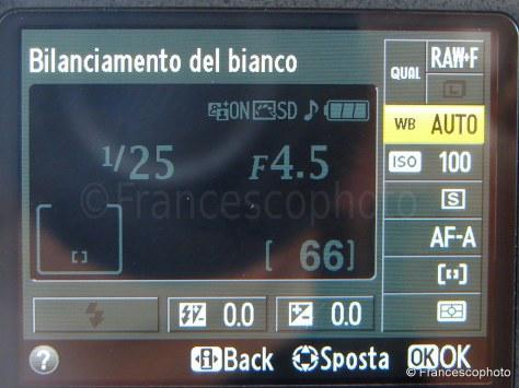 DSC02609s