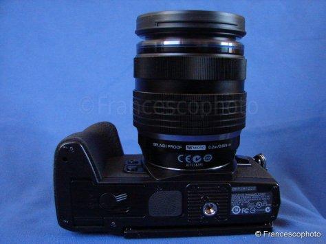 DSC03943s