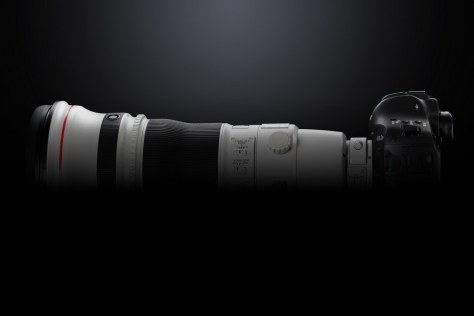 EOS-1D X Mark II EF 400mm F2.8 BK BEAUTY LEFT