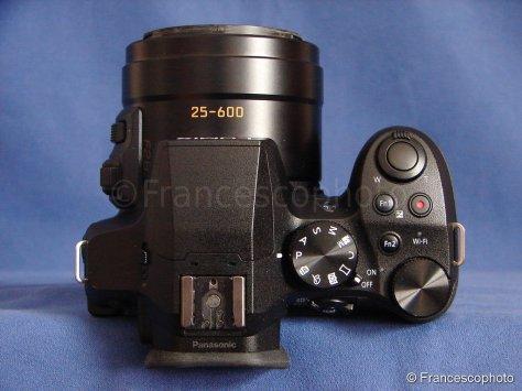 DSC06085s